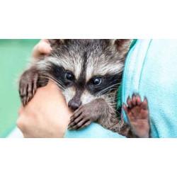 Яценко Игорь: «Не нужно превращать свою жизнь в мороку!»