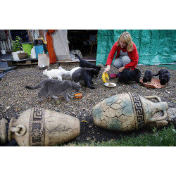 Наталья Яценко: «С енотами мы похожи - жаждой жизни»