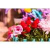 Румбокс DIY HOUSE DGM02 Калитка в цветах